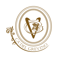 Grevino Limited